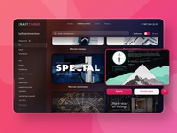 Dashboard design template market