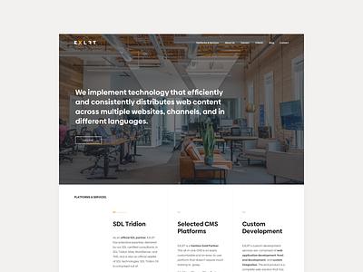 EXLRT Desktop Website Design minimalist elegant modular design clean business webdesign website design