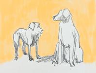 Doggos animal illustration animal pencil yellow simple illustration dog illustration dog