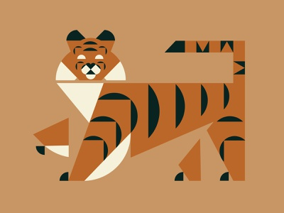 Tiger, Tiger design orange vector animal illustration cat tiger