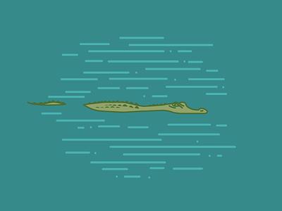 Alligator trouble animal summer everglades florida swamp outdoors alligator