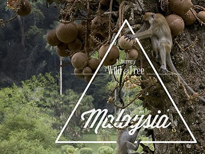 Malaysia malaysia photography monkeys triangle typography travel asia