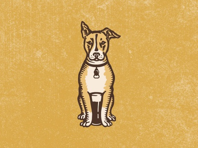 Bare Bones Brewery Logomark vintage dog illustration dog illustration dog identity hand drawn design branding logo