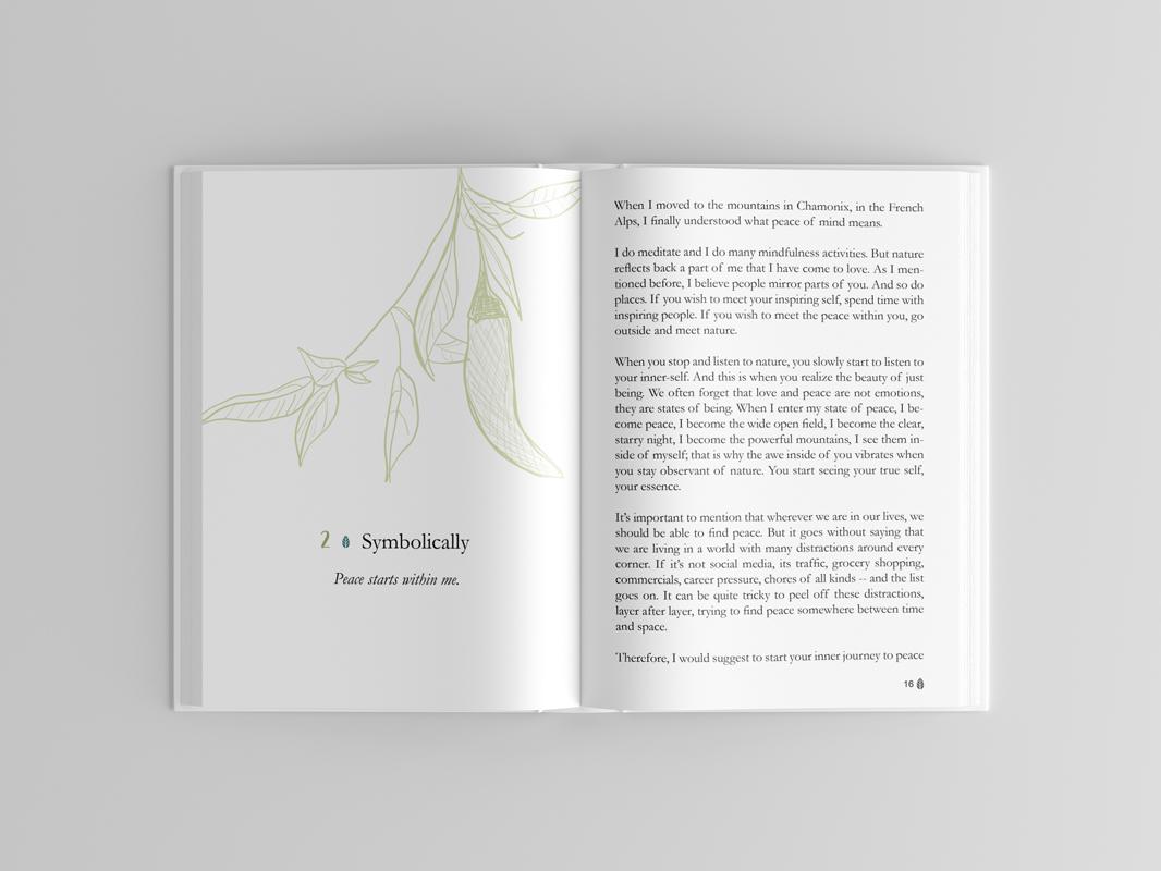 Abundance Book Inside spices book illustration