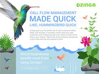 Colibri Dzinga Infographics