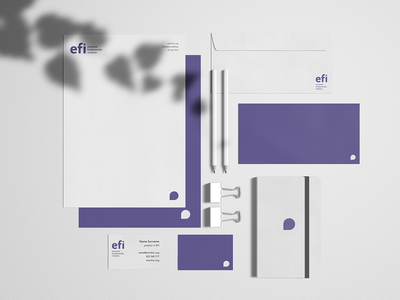 Economic Fundamentals Initiative Branding stationary economics business cards branding