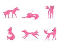 Pink Fox