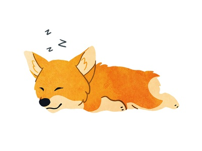 Don't Wake the Corgi pup puppy dog asleep sleeping corgi