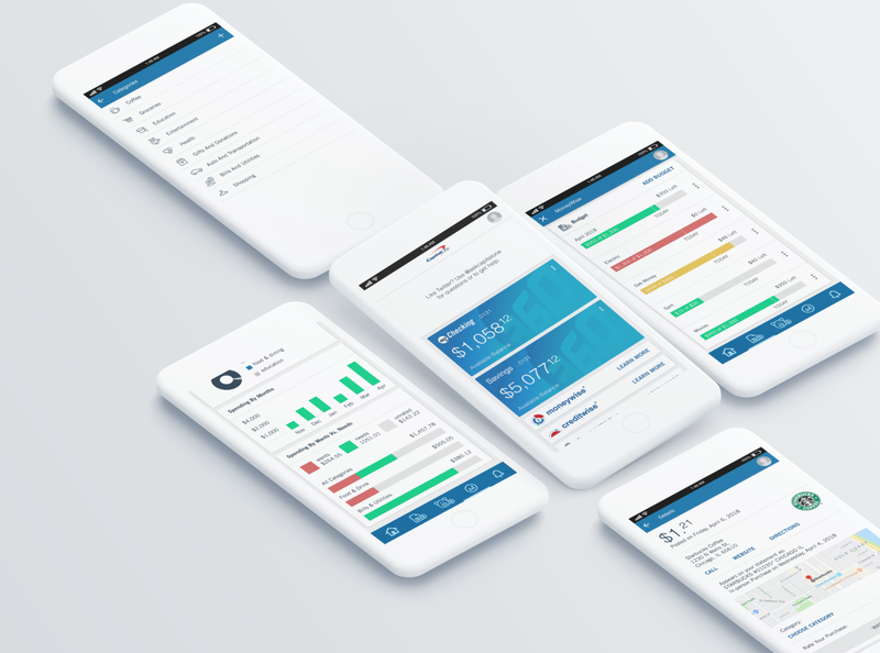 "Capital One ""MoneyWise"" ui  ux user experience user interface ui ux design"