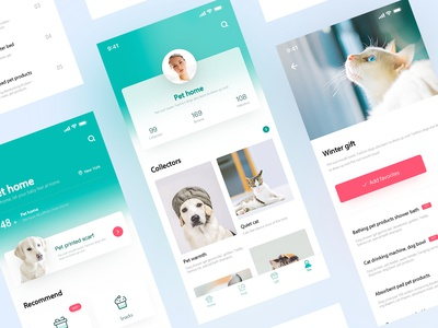 Application Design of Pet Home