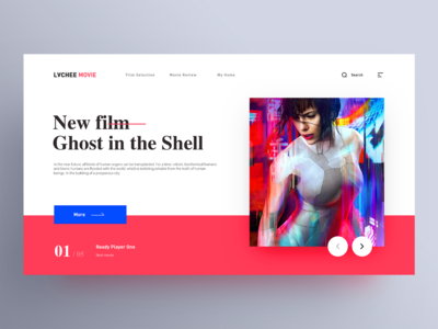 Visual Extension of Litchi Film on Web