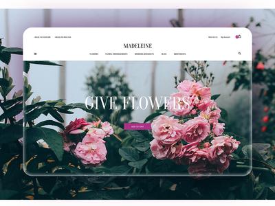 Madeleine. Home Page