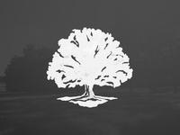Tree-umph