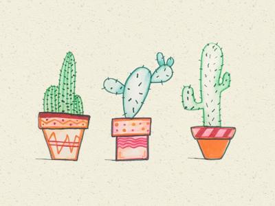 Cactus Sketch wip sketch illo texture vector illustration cactus