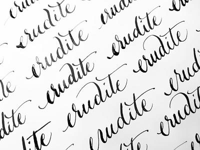Erudite wordoftheday erudite script pointed pen daily practice calligraphy