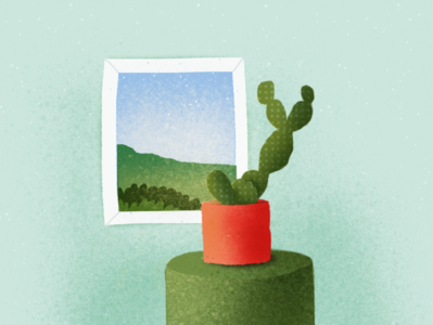 Cactus and the window