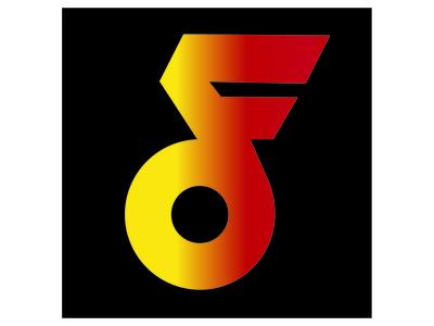 Digital Flash Logo