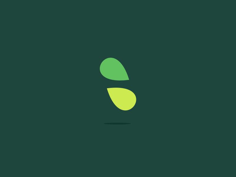 cana . 03 flat branding brand artwork apparel icon app ux typography design ui illustration logo