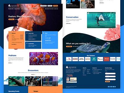 LLPA Aquarium sea ocean fish landing layout card wave conservation aquarium homepage website