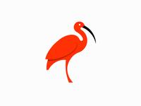 Minimal Ibis logo