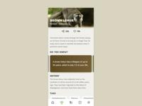 Dribbble Debut! #1 Zoo App