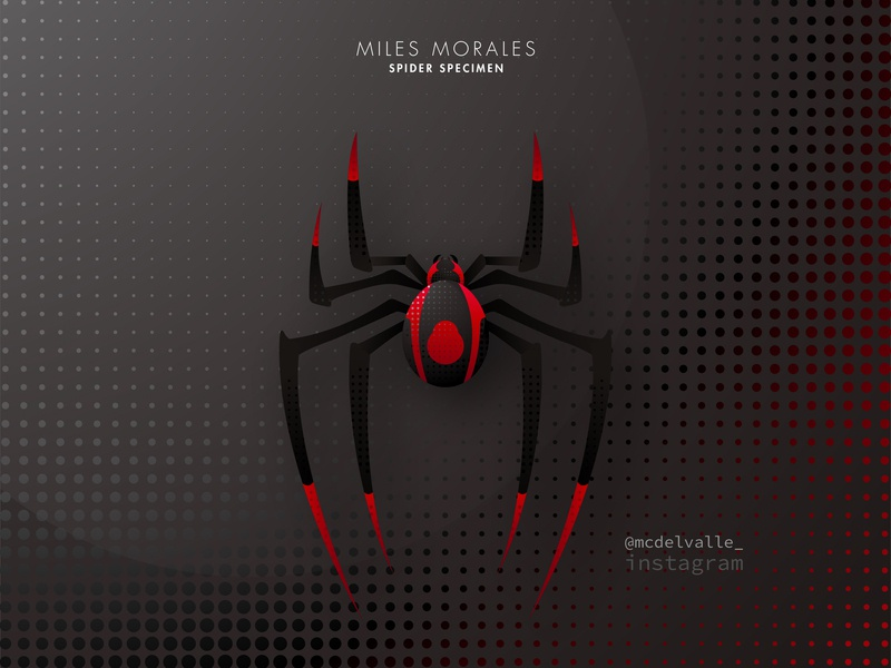 1/3 Spider Specimen: Miles Morales illustrator marvel character animal character in to the spiderverse spiderman spider logotype logo a day abstract logo animal icon animal vector logo icon clean design