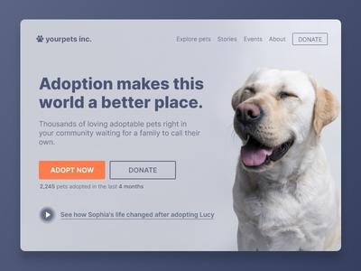 Adopt a Pet Concept UI