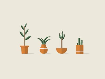 Plants in Pots 🌵