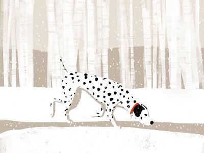 Snow dog dalmatian dog snow solstice winter
