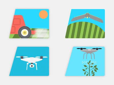 Illustration for an agro app