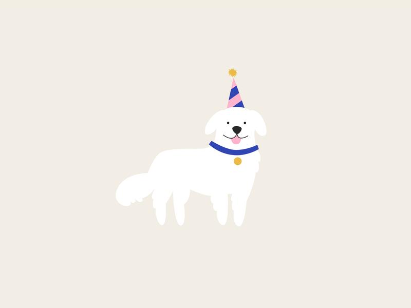 birthday dog cute birthday dog vector illustration design