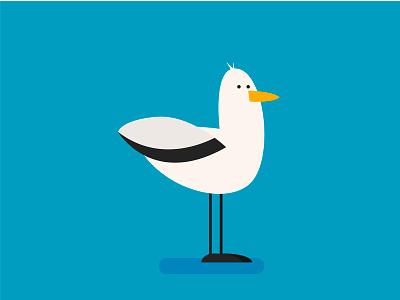 Gull bird gull vector illustration design