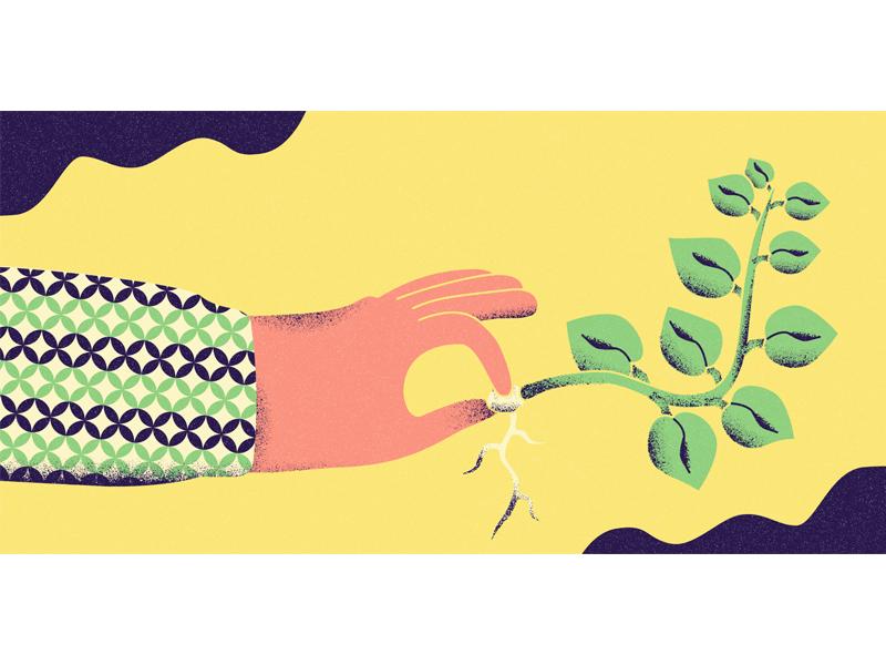 Idea Seed grain pattern hand idea seed plant graphic design pivotal digital illustration digital adobe illustrator illustrator illustration