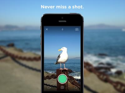 Never miss a shot leo camera seagull