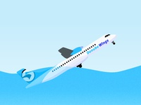 Danube Wings Airline  Digital Illustration