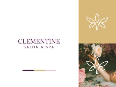 Clementine   Brand Identity