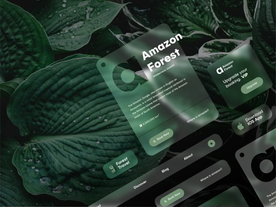 Forest Travel Cards clean ui forest travel grean leaf responsive cards ui logo simple clean flat web icon minimalistic illustration website ux modern concept ui