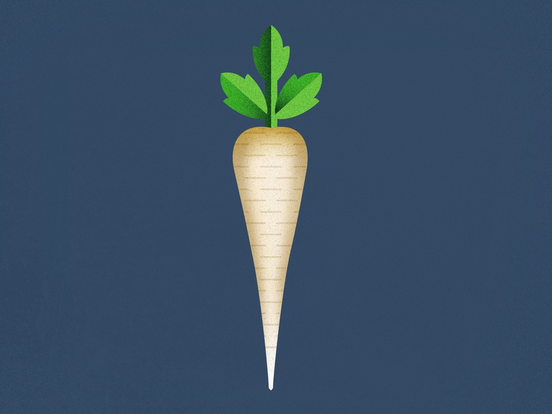 Illustration of a Parsnip leafs veggies vegetables parsnip photoshop mezzotint illustrator harvest greens geometric field structure organic illustration