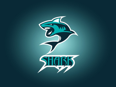 Shark Logo Concept Design
