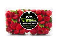 Bova Fresh Organic Strawberry Label