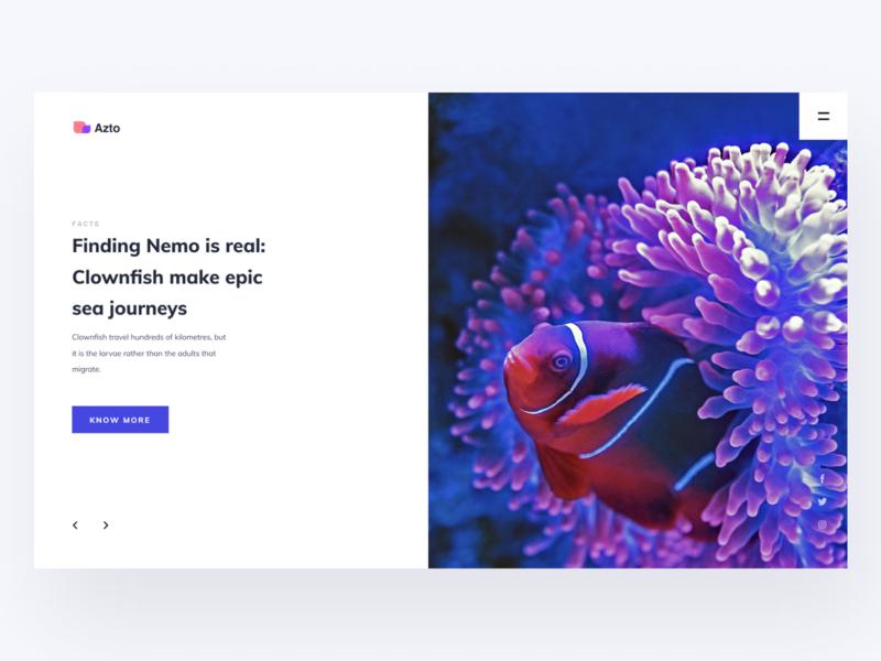 Finding Nemo Is Real deep sea deepsea fish findingnemo nemo ux header typography clean minimal web layout ritzmo ui