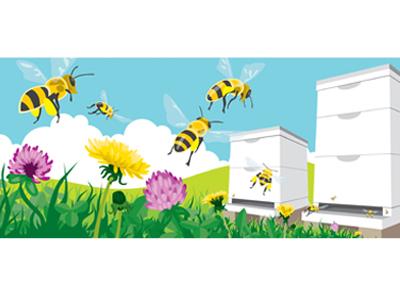 Dee's Bees Web Banner hive springtime artwork art clover buzz web banner drawing illustration vectorart vector pollen nectar flowers wildflowers honeybee honey beehive bees bee