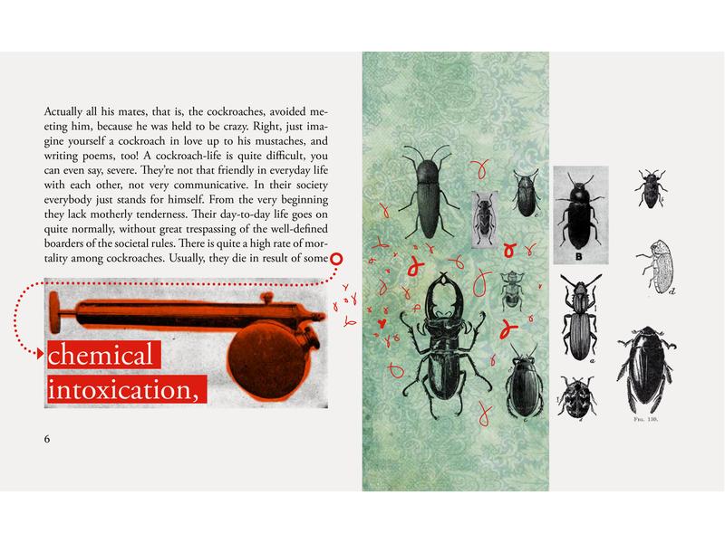 JACK  OF HEARTS cockroach book illustraion