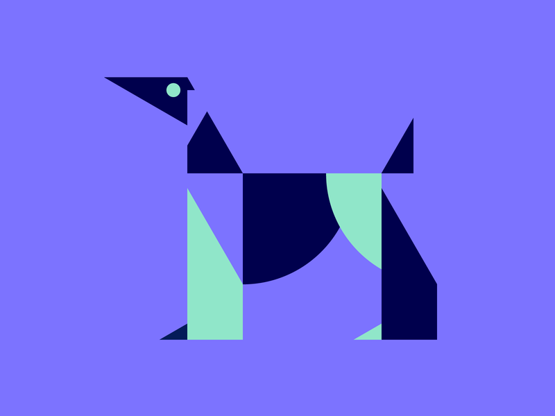 Afghan hound pictogram icon
