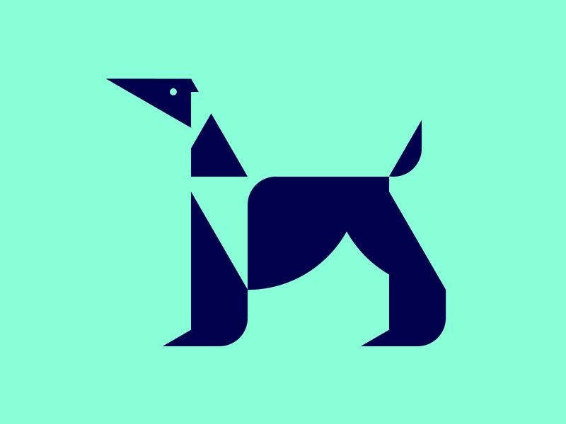 Afghan Hound picto dog hound afghan pictogram icon