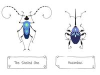 30 Days of Beetles: Days 3 & 4