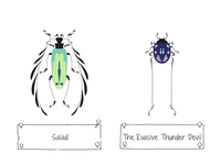 30 Days of Beetles: Days 5 & 6