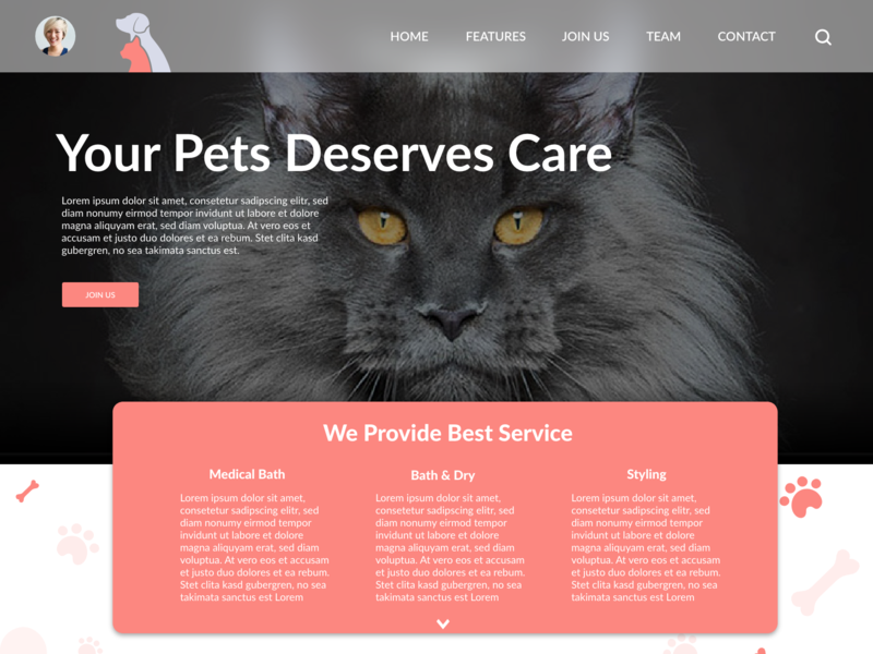 Pet Supply lettering daily daily challange illustration landing page pet care flat daily 100 challenge branding challenge website madewithadobexd dribbble ux xd ui design web graphic  design dailyui