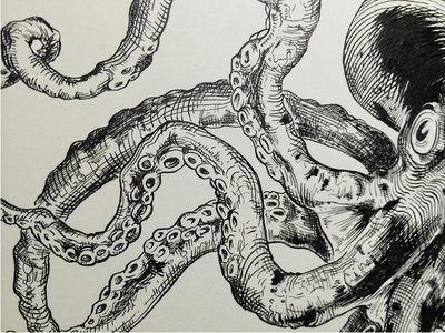 Octopus octopus tentacles crowquill illustration drawing speedball ink victorian crosshatching vintage
