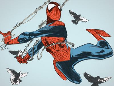 Spider-Man birds spiderman peter parker marvel comics ink color flat subdued illustration amazing brush energetic motion pidgeons
